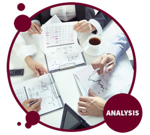 Analysis - Red Crow Marketing