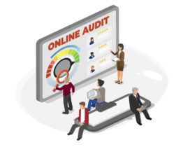 Red Crow Marketing Provides Online Audits