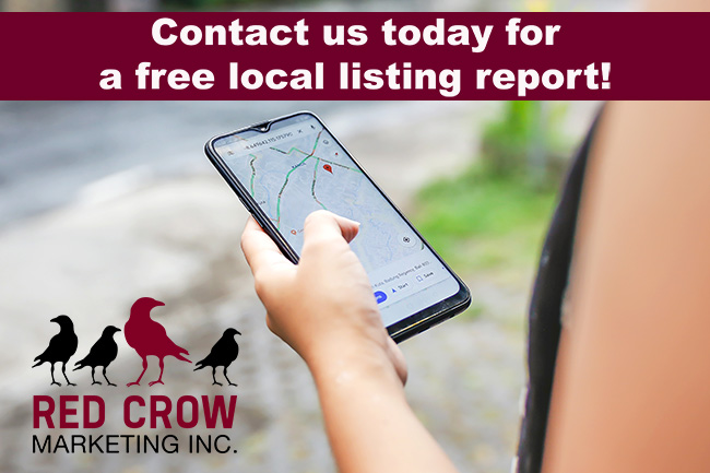Free Local SEO Listing Report With Image Of Person Searching On Their Cell Phone.